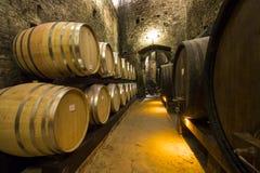 Barils de vin photo libre de droits