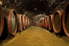 Barils de vin dans la cave d'établissement vinicole image stock