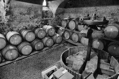 Barils de vin dans une cave Photographie stock libre de droits