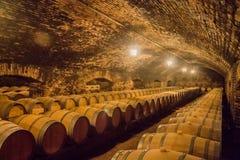 Barils de vin de chêne Images stock