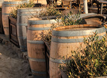 Barils de vin en bois Photo stock