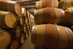 Barils de vin mexicains Photos libres de droits