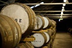 Barils de whiskey Photos stock
