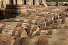 Barils de whiskey photographie stock libre de droits