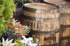Barils en bois de whiskey dehors image stock