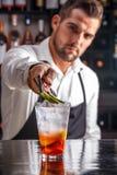 Barista che decora cocktail Fotografia Stock Libera da Diritti