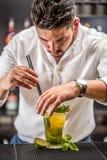 Barista che prepara il cocktail di mojito Fotografia Stock