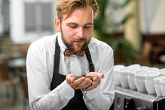 Barista checking coffee beans at the cafe Stock Photography