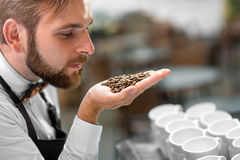 Barista checking coffee beans at the cafe Royalty Free Stock Photography