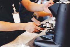 Barista making coffee grinding freshly roasted coffee beans in cafe stock photo