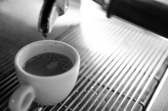 Barista making a cup of coffee s Royalty Free Stock Image