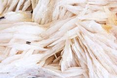 Barite , minerals morocco Royalty Free Stock Photo