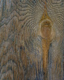 Bark aged wood texture with tree ring use as natural background Royalty Free Stock Images