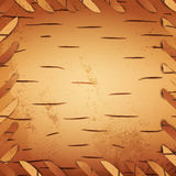 Bark birch. Illustration of bark birch background, copyspace royalty free illustration