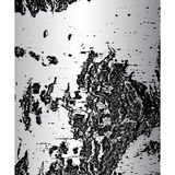 Bark of birch in the cracks texture. Vector illustration.  vector illustration