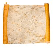 bark birchen expanded scroll Στοκ Φωτογραφία