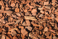 Bark chips mulching background Royalty Free Stock Images