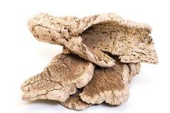 Free Bark Cork Oak Tree Dry Royalty Free Stock Photo - 38299315