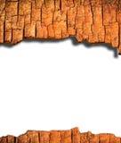 Bark frame isolate Royalty Free Stock Image