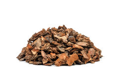 Bark Stock Image