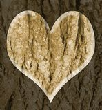 Bark heart. Illustration of heart carved on wood bark Royalty Free Stock Photos
