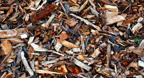Bark leaves and wood chippings mulch royalty free stock images