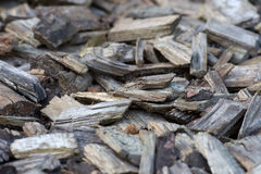 Bark Mulch Royalty Free Stock Image