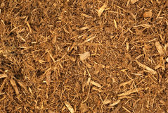 Bark Mulch Background royalty free stock photo