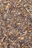 Bark mulch Stock Images