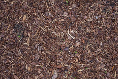 Bark mulch Royalty Free Stock Photography