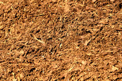 Bark mulch Stock Photos