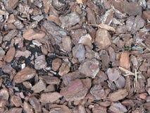 Bark mulch Stock Photos