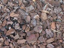 Bark mulch Royalty Free Stock Photography