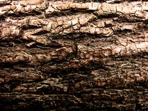 The bark of the old tree 3735. Brutal deep wood texture. Art Effect. Dark red tone. The bark of the old tree 3735. Brutal deep wood texture. Art Effect. Hard royalty free stock photography