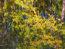 Bark River Reflection Wisconsin Royalty Free Stock Images