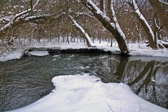 Bark River in winter Royalty Free Stock Photos