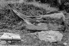 Bark sculpture. Handmade Bark sculpture on stone.Natural background stock illustration