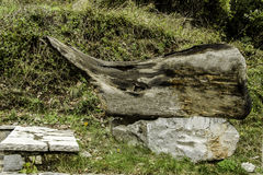 Bark sculpture on stone Royalty Free Stock Image