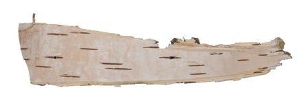 Bark slice Stock Images