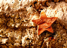 Bark star shape christmas symbol on cork Royalty Free Stock Images