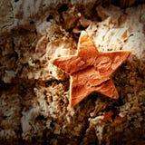 Bark star shape christmas symbol on cork Stock Photography