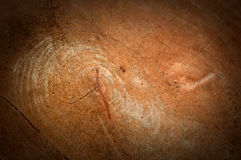 Bark texture background. Pattern crack old brown for design royalty free stock photo