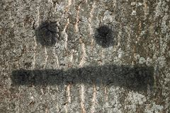 Bark of tree with painted smile Royalty Free Stock Image