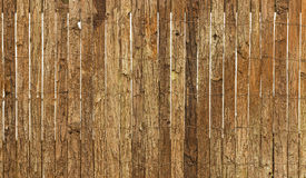Bark Wall Royalty Free Stock Photography