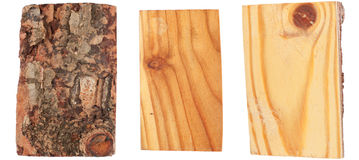 The bark and wood of larch Stock Image