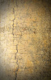Bark wood texture background. Pattern Stock Photography