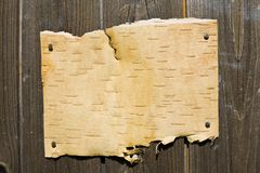 Bark On Wooden Background Royalty Free Stock Images