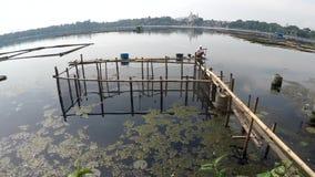 Barkarzy paddles bambusowa tratwa przez zanieczyszczających jezioro ryba pióra zbiory wideo