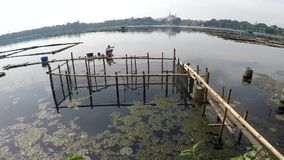 Barkarzy paddles bambusowa tratwa przez zanieczyszczających jezioro ryba pióra zbiory