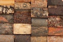 Barke der verschiedenen Bäume, Hintergrund stockfotos